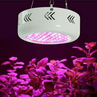 216W LED Grow Light Full Spectrums IR Indoor Hydroponic System Plan Lamp EU