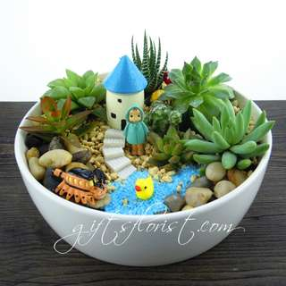 Mother's day Gifts: Plant Gifts Miniature Garden 1