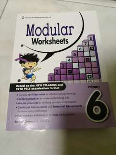 P6 math assessment book