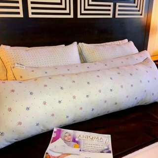 Washable Aniqma pillows
