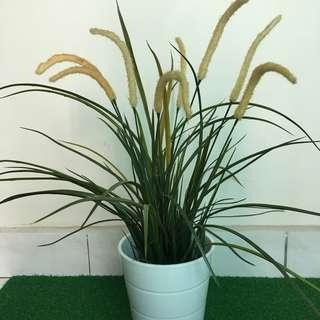 Ikea Kardemumma Plant pot + Artificial plant