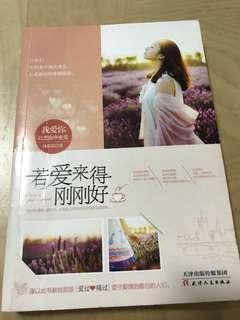 Chinese Books/Novels 若爱来得刚刚好 Author: 沐依晨