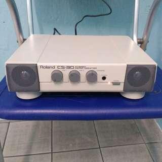 Roland cs30 micro system