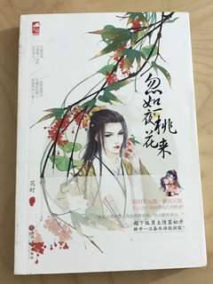 Chinese Books/Novels 勿如一夜桃花来   Author:花时