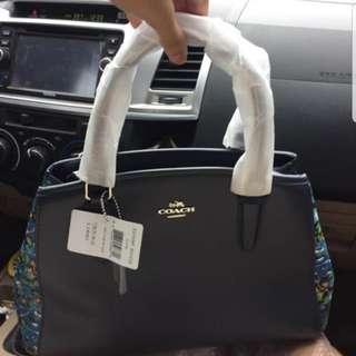 Coach Dome Bag