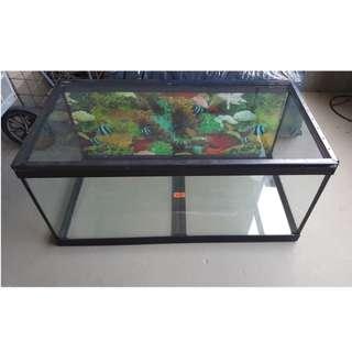 50 Gallon Aquarium Tank