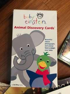 Baby Einstein - Flash Cards