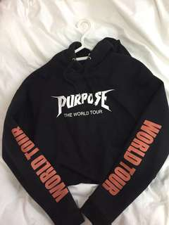 Purpose tour cropped sweater