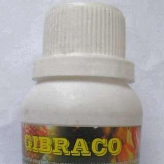 ZPT GIBRACO 100 ml