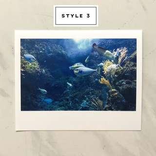 Photographs Printed Photocards