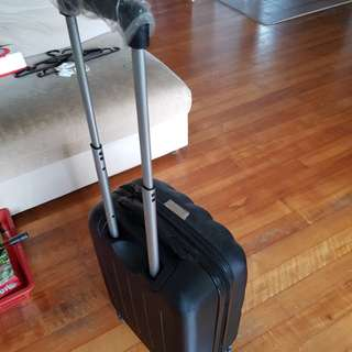 (moving out sale) luggage