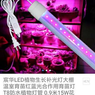 Pre Loved - Grow Light