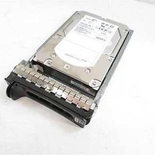 Dell Enterprise 600GB Hard Drive - Refurbished