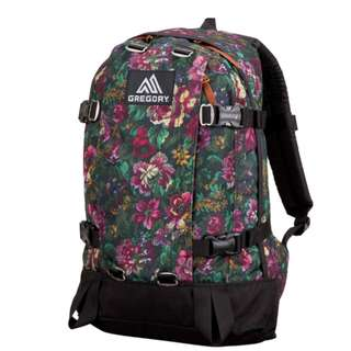 GREGORY ALL DAY PACK