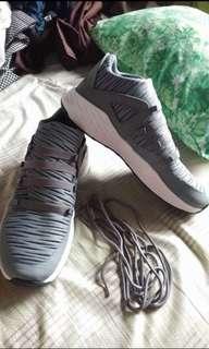 AUTH NEW Jordan Shoes