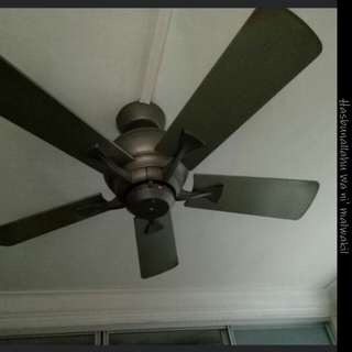 For Free Ceiling Fan