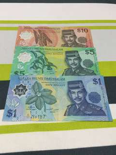 Brunei currency