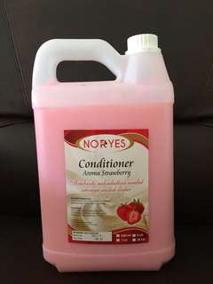 Noryes Conditioner