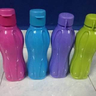 Candy Pop Eco Bottle