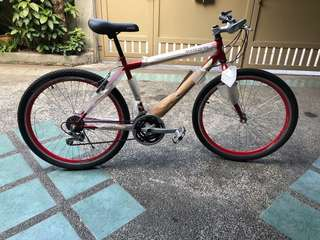 Stryker Mountain Bike