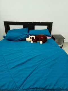 PRELOVED Bedframe
