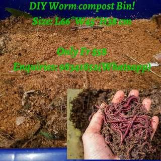 DIY Worm Compost Bin