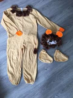 Children's lion costume