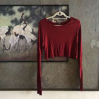 Zara Red Long Sleeved Crop Top