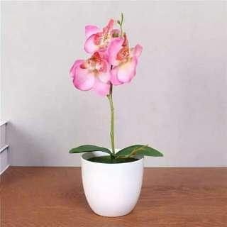 Bunga anggrek plastik palsu orchid artificial silk