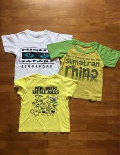Boys T-shirt 3-4years old