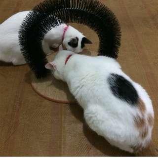 88雜貨鋪 寵物用品 貓咪拱門蹭毛器 貓咪抓癢玩具 寵物梳毛刷