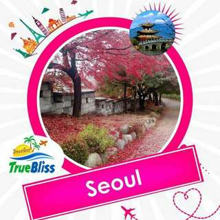 Korea Group Tour Package