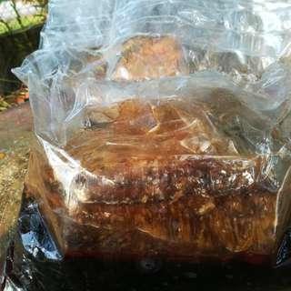Madu Tualang Asli dari hutan 3kg