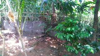 1244sqm Lot in Sta. Maria Bulacan, Garden Village Former Piggery