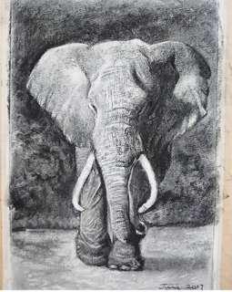 炭筆畫/ charcoal drawing