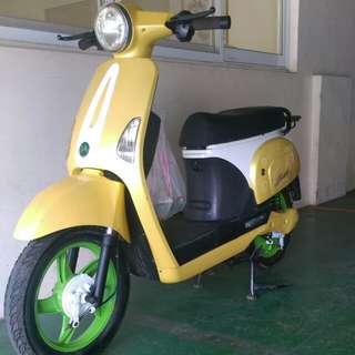 E bike new battery 48v. 22ahx4