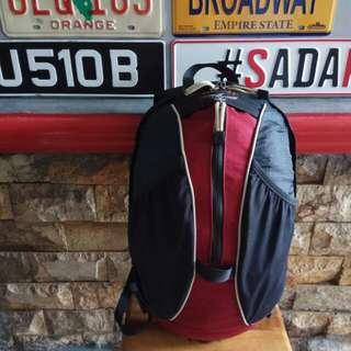 Backpack osprey waypointday