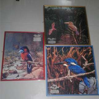 Sets Of 3 Vintage Birds Photograph
