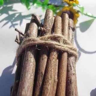 DIY 乾樹枝