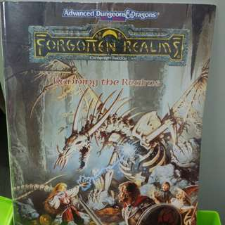 adv dungeons & dragons forgotten realms running the realms