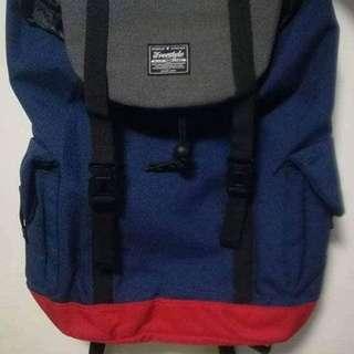 Freesstyle Travelling Bag