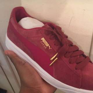 Completely Brand New Puma Suede Shoes