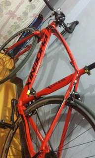 PHOENIX Road Racing Bike