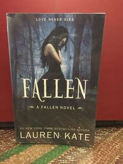 The fallen series ( first two books )