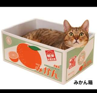 Scratching box for cats and kittens