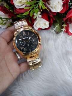 Fossils Watch