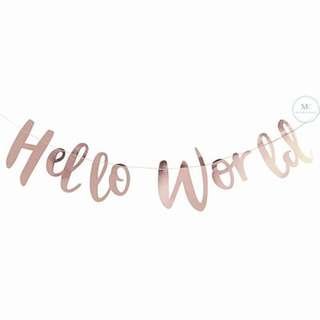Hello World Rose Gold Banner Baby Shower Party Decoration