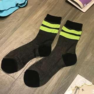 🆕全新 tutuanna 夏季薄襪