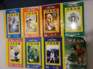Chinese Teenage Digest Story Books