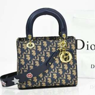 TAS LADY DIOR EMBROIDERED